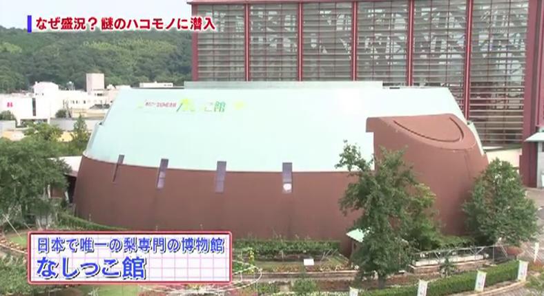 島根県松江市のシステム開発と企画会社のBABYL tvcm 鳥取なしっこ館